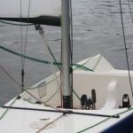 2014 fete du nautique J1 #061