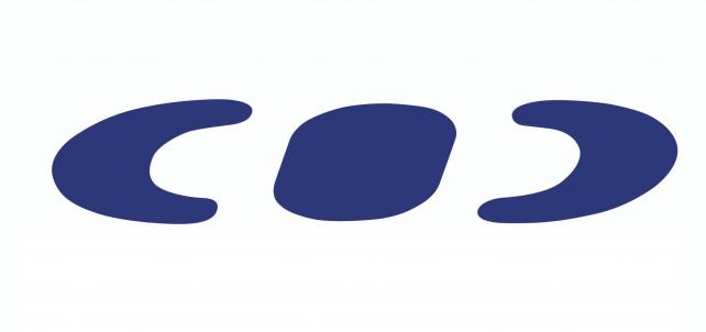 Logo voile Néo495